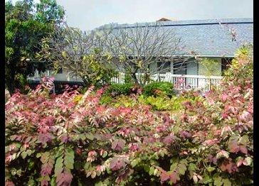 Kauai Poipu Plantation Vacation Rentals