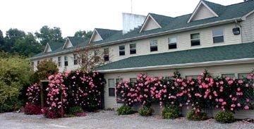 Wildwood Lodge, B&B, Stables and Cabins