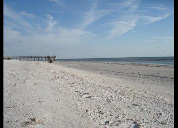Beachfront  1BR Condo