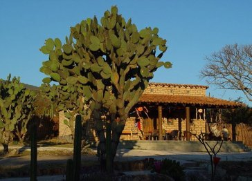 Oaxaca B & B style Country Ranch