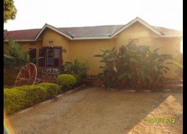 Beautiful 11 bedroomed villa for rent - Entebbe