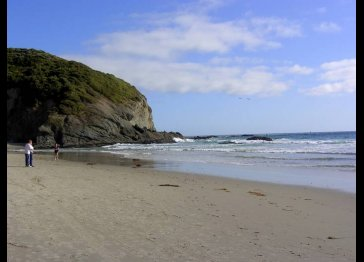 Dana Sands Seaside Retreat
