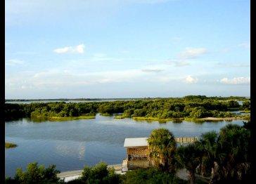 Serenity in Cedar Key