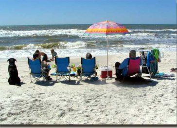 Cape San Blas FL Condo-  Barrier Dunes GULF VIEWS 75 STEPS to beach!  Pools/Tennis