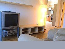 Rent Kiev Apartment