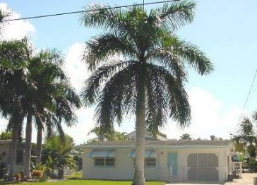 Royal Palms Getaway Canal Home 700 ft. to Beach, Pool, Dock