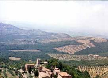 Castello di Mongiovino