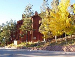 Mountain View Condo