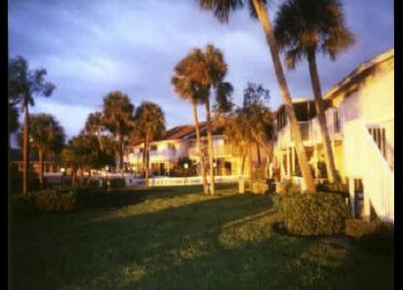 Bayfront condo in Saint Petersburg, FL