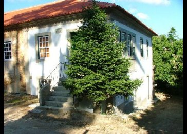Bento Novo Manorhouse - Tourism in the Country