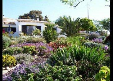 Carob Cottage - Quintassential