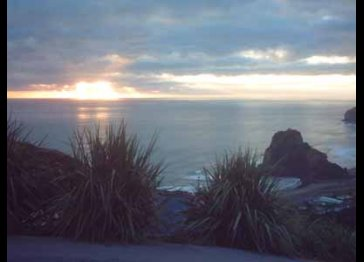 Piha Beach House