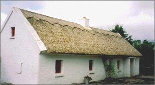 Castlebar Thatch Cottage
