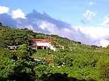 Debbie Kings Country Inn, Costa Rica
