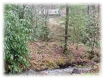 $110 Great Smoky Mountain Escape