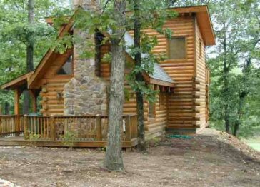 Lil Treehouse