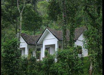 Cardamom Club - plantation getaway