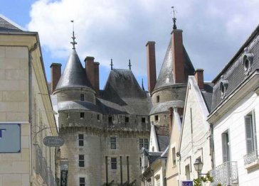 Maison Blanche-400yr House facing CASTLE in LOIRE VALLEY!