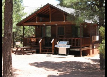 Homesteader Luxury Cabin for Rent