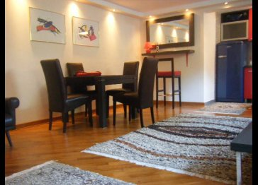 CHEAP LUX APARTMENT NEAR ROYAL PALACE BELGRADE!FREE PARKING!