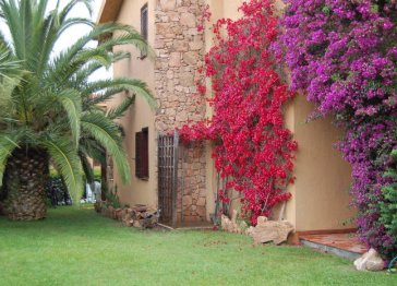 Beautiful house for rent in Sardinia, San Teodoro