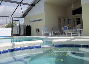 Luxury Disney 4 bed/3 bath villa