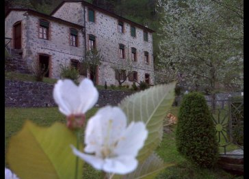 Casa Pedogna in the green Tuscany